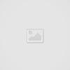 Індиго TV